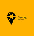 geotag with shield or location pin logo icon vector image vector image
