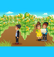 kids on a corn field vector image vector image