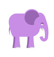 Purple elephant Big cute animal Animal from jungle vector image