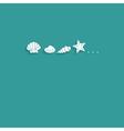seashells flat card vector image vector image