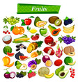 fresh and nutritious fruit set including apple vector image
