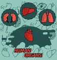 human organs flat concept icons vector image