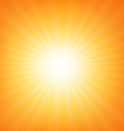 Sunburst Poster With Beams vector image