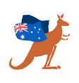 australia day emblem holiday kangaroos and vector image