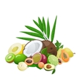 Big group of exotic fruit vector image