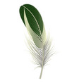 exotic bird feather icon realistic style vector image