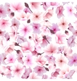 Seamless pattern with cherry blossom Blossoming vector image vector image