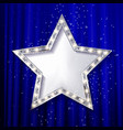 silver star on the starry night vector image vector image