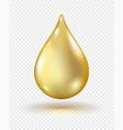vitamin gel droplet vector image