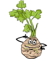 Funny celery vegetable cartoon vector image
