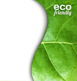 Leaf Poster vector image vector image
