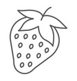 strawberry thin line icon fruit and vitamin vector image vector image