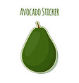 avocado sticker logo tropical summer fruit label vector image