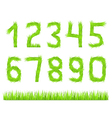 Grass Numbers vector image