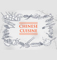 template different types chinese cuisine vector image vector image