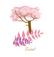 tropical plants with leaves beautiful zedrel vector image vector image