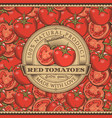 vintage red tomatoes label on seamless pattern vector image