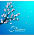 floral branch background concept vector image