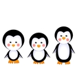 cute penguins baby vector image