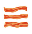 fried bacon stripe pork meat healthy tasty vector image vector image