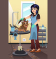 pet groomer grooming a dog at the salon vector image