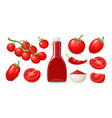 set of hand drawn tomatoes branch whole and vector image vector image