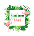 summer sale cartoon flat vector image vector image