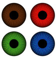 set of human eyes iris isolated on white vector image