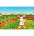 A bunny holding a carrot along the garden vector image vector image