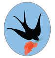 black swallow bird on white background vector image