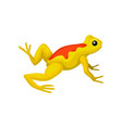 flat icon of bright yellow frog with orange vector image vector image