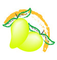 mango fruit logo isolated on white background vector image