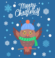 merry christmas owl with scarf vector image vector image