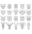 polygonal geometric linear animal fox deer bear vector image vector image