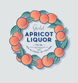 ripe apricots wreath liquor label packaging design vector image vector image
