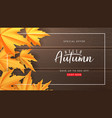 seasonal banner for autumn sale vector image vector image