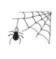 spider web hand drawn sketched web isolated on vector image