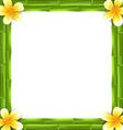 Natural Frame Made Bamboo and Frangipani Flowers vector image