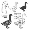 goose cuts butcher diagram design element for
