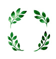 4 branches vector image