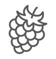 blackberry line icon fruit and vitamin raspberry vector image vector image