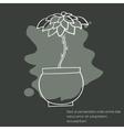 Cactus invitation card vector image vector image