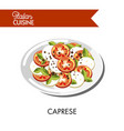 caprese italian cuisine mozzarella cheese and vector image vector image