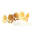 luxury decorative tulip floral postcard template vector image