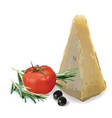 parmesan tomato olives and rosemary vector image