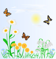 Spring background spring flowers and butterflies vector image vector image