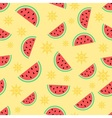 Summer and watermelon vector image
