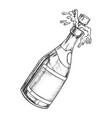 champagne blank bottle explosion monochrome vector image