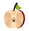 isolated geometric apple cut low poly vector image vector image