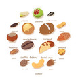 nuts and seeds icons set isometric style vector image vector image
